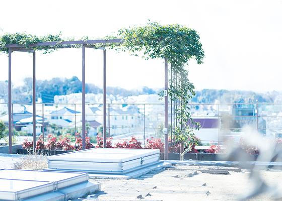 屋上庭園のイメージ